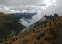 Klima & Reisezeit in Kolumbien