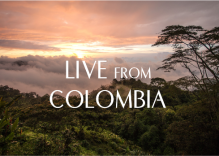 Live from Colombia
