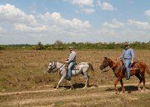 Corocora Camp – Colombian Safari
